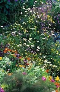 Welche Blumen Für Bienen : nahrung f r bienen die idealen blumen f r balkon und garten die manowerker ~ Eleganceandgraceweddings.com Haus und Dekorationen