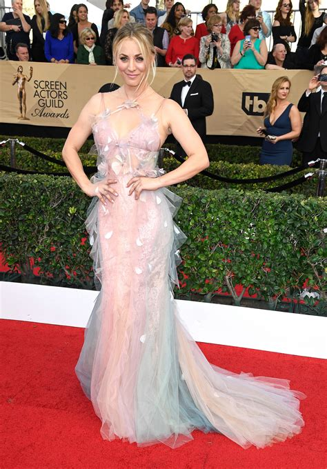 SAG Awards 2017 Red Carpet Roundup: All The Looks From The ...