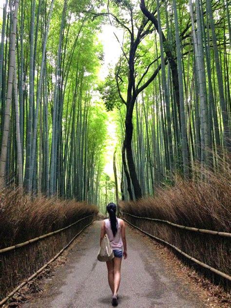 jamie summer  kyoto