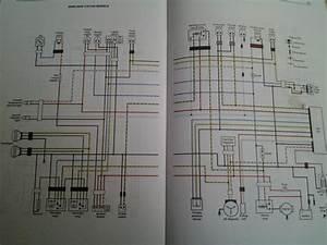Yfz450r Wire Diagram
