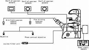 Wiring Diagram For Mercury Vapour Light Free Download