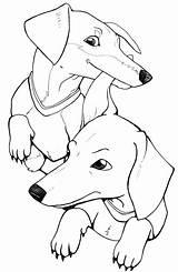 Coloring Dachshund Dogs Jamniki Kolorowanki Drukuj Pobierz sketch template