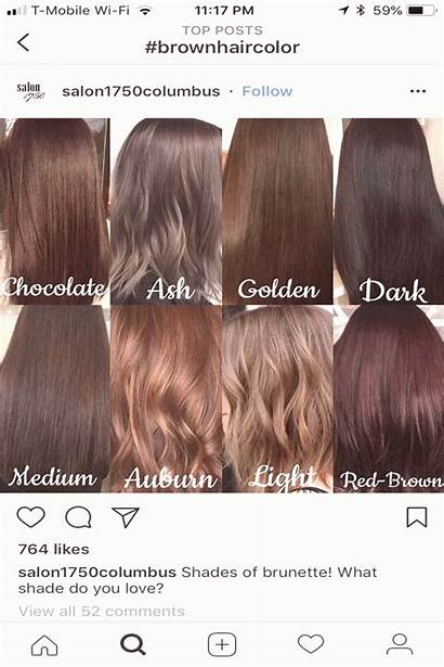 Brown Ash Blonde Tone Auburn Dark Pinotom