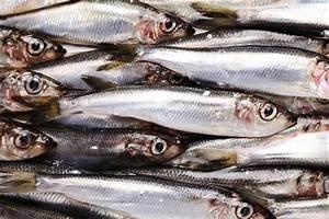 Sardines & Sodium | LIVESTRONG.COM
