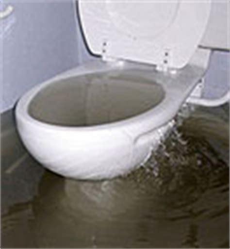 toilette bouchee comment faire debouchage allo d 233 bouchage 24h 24 7j 7 debouchage de canalisation