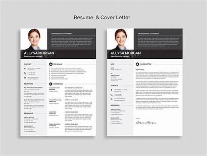 Resume Word Template Professional Letter Cv Templates
