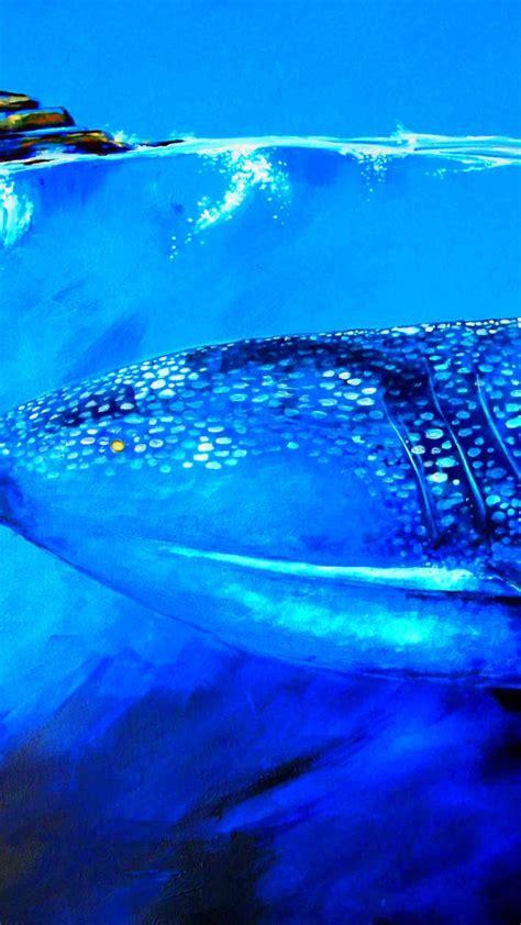 wallpaper whale shark underwater art animals