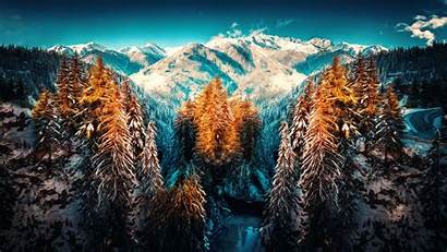 Forest Snow Landscape Winter Nature Mountains 5k