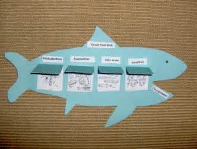 Ocean Food Chain Project