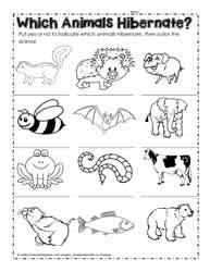 hibernation worksheets
