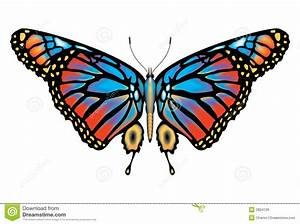 Lepidoptera Stock Illustrations, Vectors, & Clipart – (874 ...