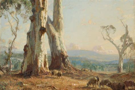 hans heysens morning light  abc news australian