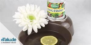 Zimmer Geruch Entfernen : schlechte ger che entfernen gute geruchsneutralisierer ~ Markanthonyermac.com Haus und Dekorationen