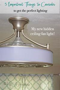 Important things to consider before buying ceiling