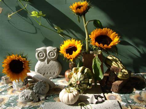 Gartendeko Herbst by Beton Deko Im Herbst Meriseimorion