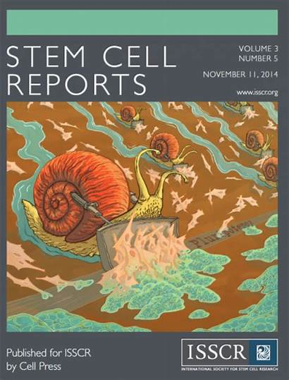 Cell Stem Reports Pnca Hsci Journal Lab