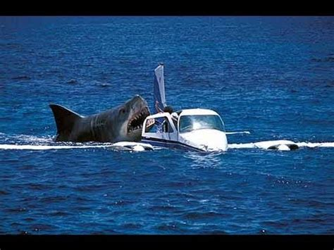Boat Crash Africa by Megalodon Shark Attack On Attacking Crash