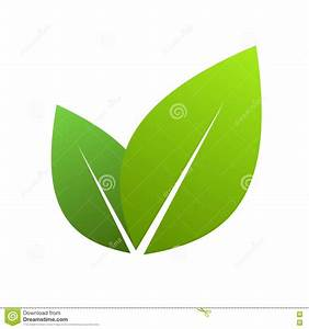 11 Vector Leaf Icon Images - Green Leaf Vector, Black and ...