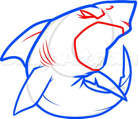 How To Draw A Cool Shark, Step By Step, Sea Animals