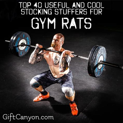 christmas gifts for gym rats top 40 useful and cool stuffers for rats gift