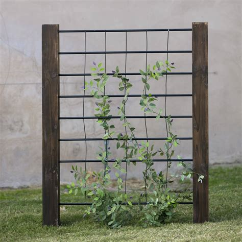 Metal Trellis by How To Create Backyard Privacy For Your Outdoor