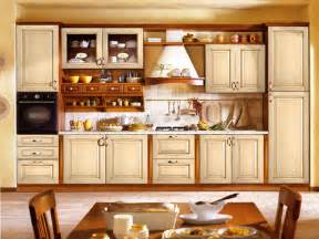kitchen cabinet pictures ideas kitchen cabinet designs 13 photos home appliance