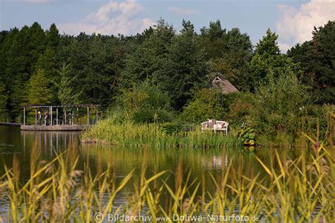 Botanischer Garten Hamburg Cafe Palme by Botanischer Garten Erholung Am Teich Besucher Info