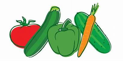 Vegetable Transparent Clipart Icon Vector Agriculture Jalapeno