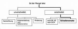 Abrechnung Nach Gutachten Musterbrief : m ngelbeseitigung vob m ngelbeseitigungsaufforderung nach abnahme vob vertrag mustervertr ge ~ Themetempest.com Abrechnung