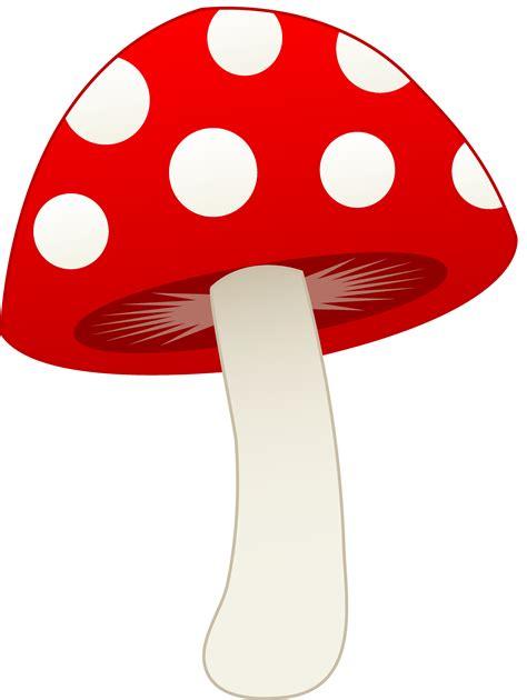 red  white mushroom  clip art