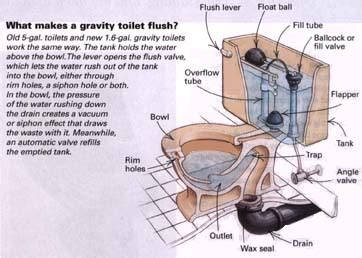 Parts Of A Water Closet by Choosing A Toilet Theplumber