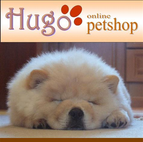 hugo pet shop dog food   show canin selection