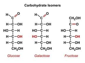 Carbohydrates Chemical Structure