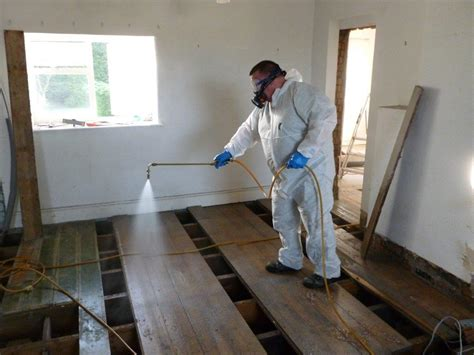 woodworm treatment protectahome  years specialist