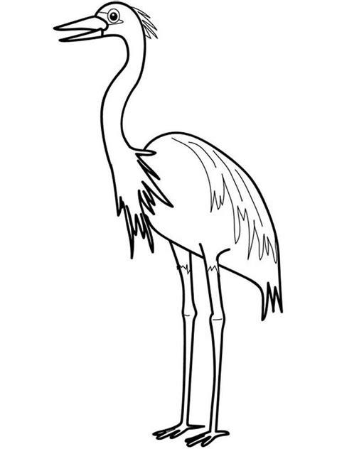 egrets coloring pages   print egrets coloring pages