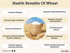 Wheat Benefits And Its Side Effects
