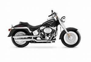 Harley Davidson Softail Models Service Manual Repair 2002 Flst Fxst
