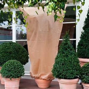 Winterschutz Für Kübelpflanzen : k belpflanzen sack xxl 2er set online kaufen bei g rtner p tschke ~ Avissmed.com Haus und Dekorationen