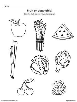 kindergarten plants  animals printable worksheets