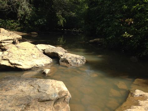 big creek fall atv festival  city  lafollette