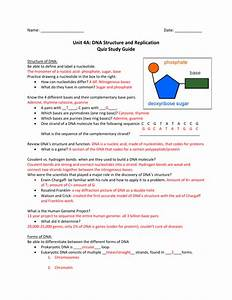 Unit 4a  Dna Structure And Replication Quiz Study Guide