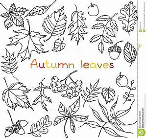 Autumn leaves doodles set stock vector. Illustration of ...