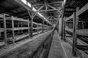 Auschwitz-Birkenau - No Regrets!