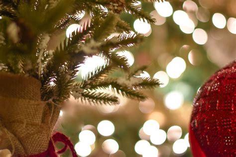 plantation baptist church christmas lights christmas
