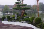 Japanische Häuser In Deutschland by Quot Zeng 228 Rten Japanische G 228 Rten Japangarten Japan Garten