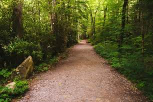 Great Smoky Mountains National Park Hiking Trail
