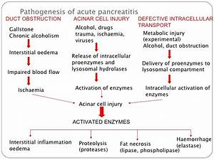 Acute Pancreatitis – Stepwards