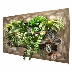 Tableau Végétal Mural : tableau vegetal achat vente tableau vegetal pas cher ~ Premium-room.com Idées de Décoration