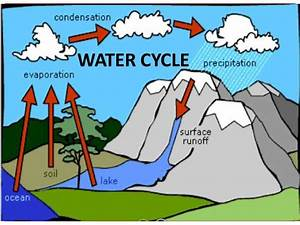 WATER CYCLE (Teach)