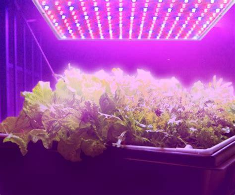 Plant Lighting Hydroponics by Led Grow Light 14w Blue Plant Light Hydroponic